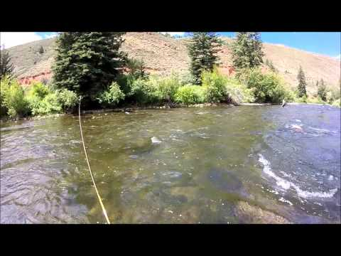 Fly Fishing the Eagle River, Colorado  - WYFFC 2015