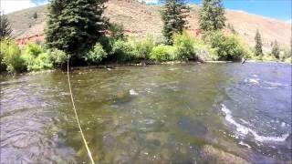 Fly Fishing the Eagle River, Colorado  - WYFFC 2015