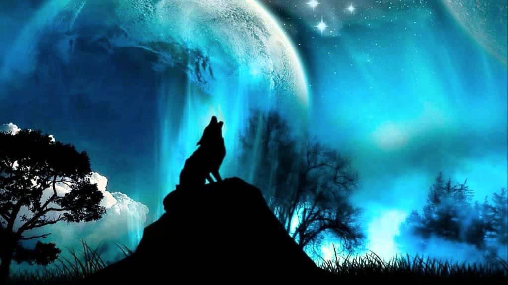 Wolf Night