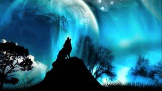 ☽ Night Sounds with Wolves and Fire
