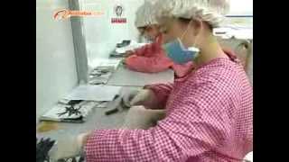 Eyelash Extensions suppliers, wholesalers ,distributors of china-www.worldbeautylashes.com