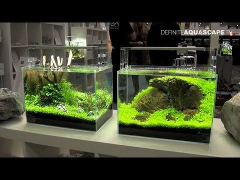 Aquascaping - Planted Aquariums of Aqua Design Amano Deutschland ...