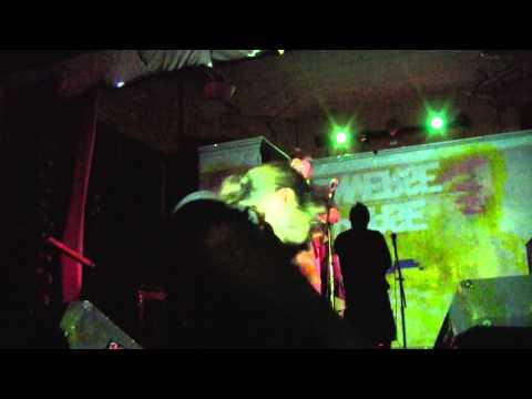 Inverse Phase - The NESsage (live at Galltery 5, Richmond Va)