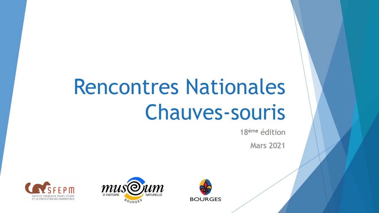 rencontres chiroptères bourges 2021
