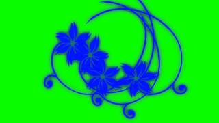 Download Video flowers in green screen free stock footage MP3 3GP MP4