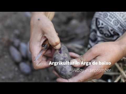 Agricultur in Arga de Baixo