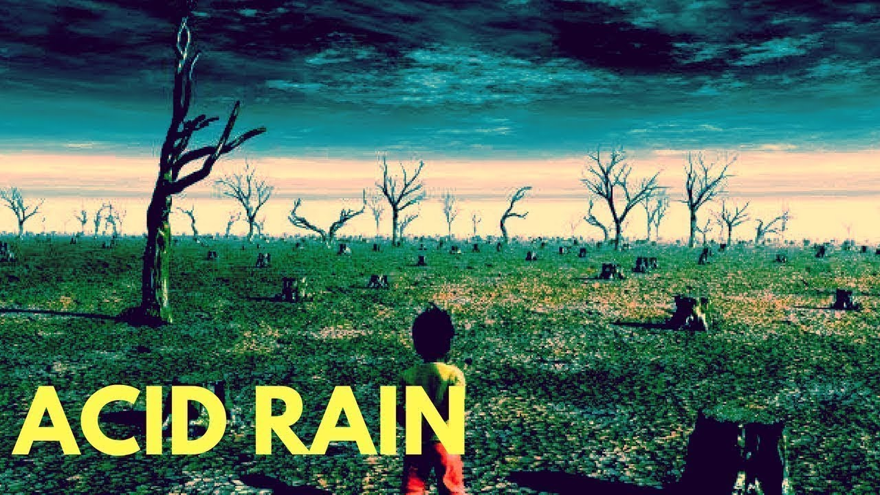 Acid rain makes the best fucking porno flicks