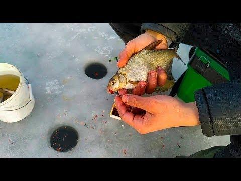 Зимняя рыбалка ловля леща зимой на поплавок и такое бывает 2019