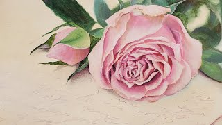 Pink Rose Love Letter Acrylic Painting LIVE Tutorial