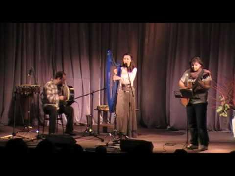 """Meldis (Celtic Harp) - """"Son ar Chistr"""""""
