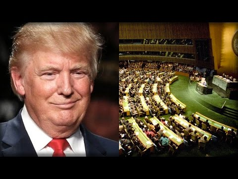 TRUMP JUST EXPOSED THE UN FOR WHAT THEY REALLY ARE AND SHOCKED THE WORLD