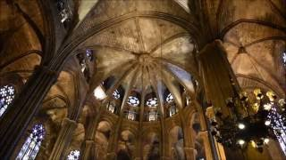 バルセロナ大聖堂 Catedral de Barcelona   内部 拝廊付近