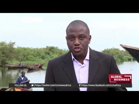 14 Out Of 22 Factories Shut Down As Fish Stocks Dwindle In Uganda