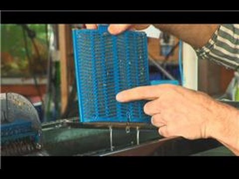 Saltwater fish tanks how to change a saltwater fish tank for How to make a fish tank filter
