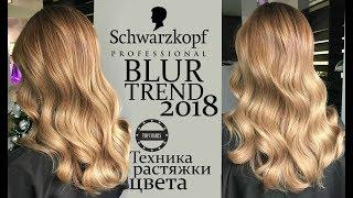 TREND 2018 BLUR Swarzkopf - Техника растяжки цвета №1