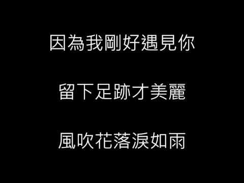 李玉剛 - 剛好遇見你 (歌詞)