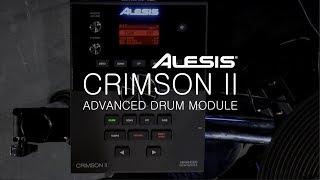 ALESIS drums - CRIMSON II ADVANCED DRUM MODULE - TIM ROOT Demo ! (Vidéo La Boite Noire)