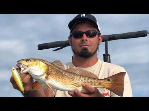 Catching Redfish In Panama City, Fl