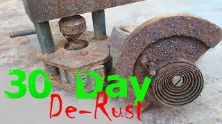 De-Rusting Experiment 30 days In Vinegar ~ Dirt and Rust