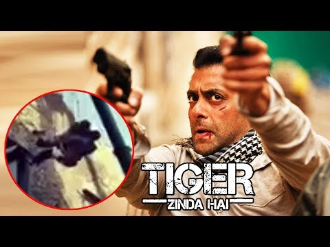 Salman Khan's ACTION SHOT From Tiger Zinda Hai LEAKED VIDEO
