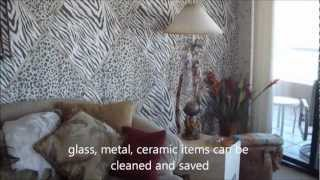 Mold Remediation Clearwater Beach