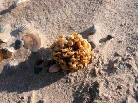 Groove Armada - 'Sand dunes and salty air'