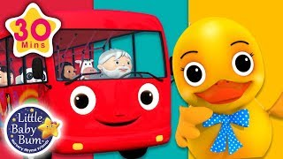 Five Ducks On A Bus | + More Nursery Rhymes & Kids Songs | Songs for Kids | Little Baby Bum