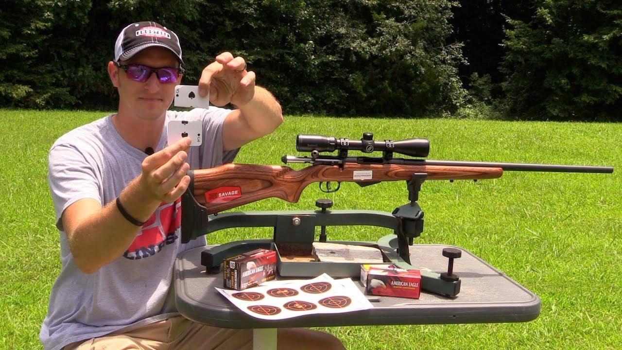 bolt action 17 hornet - PageBD Com