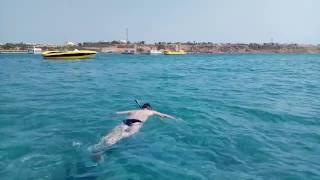 видео Отзывы об отеле » Partner Turquoise (Партнер Туркуаз ) 4* » Шарм Эль Шейх » Египет , горящие туры, отели, отзывы, фото