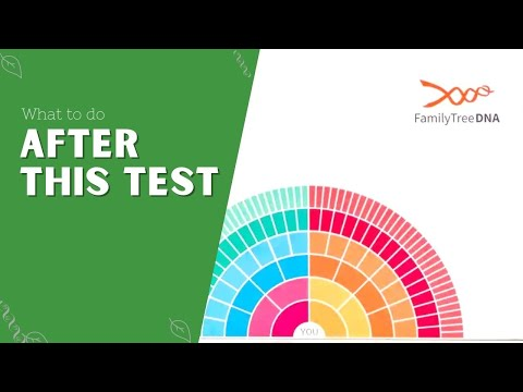 An Introduction To Family Tree DNA - A Segment Of DNA