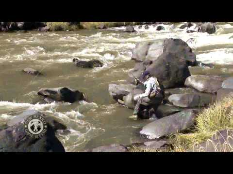 Fly-Fishing On The Rio Grande