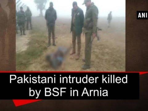 Pakistani intruder killed by BSF in Arnia - Jammu and Kashmir News