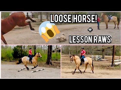 Horse Runs Loose During My Lesson - Pole Work Raws