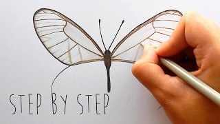 Step by Step | How to draw and color a butterfly with colored pencils | Emmy Kalia