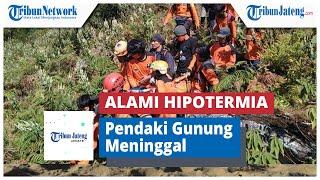 Mahasiswa Universitas Bina Nusantara Jakarta tewas saat akan mendaki Gunung Pangrango, melalui jalur.