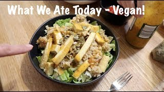 What We Ate Today - Vegan!
