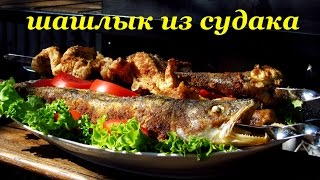 Рецепт шашлыка из судака от Алкофана