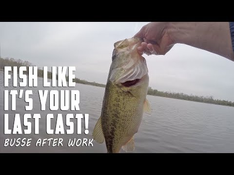 Fish Like It's Your Last Cast!  Busse Woods After Work!