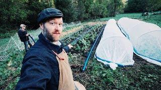 NEW Gardening Trick Helps Me Grow Food (IN WINTER)