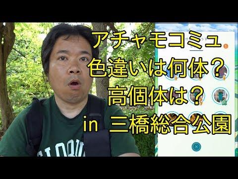 【ポケモンGO】アチャモコミュからEXな貪欲コース in 三橋総合公園