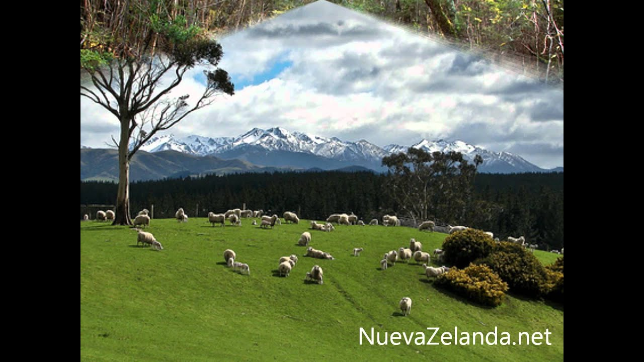Paisajes naturales nueva zelanda youtube for Cascadas para jardin fotos