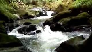 Cwmdu Falls Near New Castle Emlyn