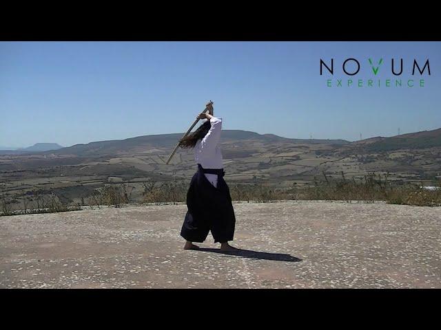 07 Shichi no suburi - Aikido Novum Experience - Ken suburi nanahon -合気道-  七の素振り- 剣素振り七本