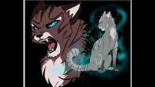 Ivypool .:I knew you were trouble:. Speedpaint