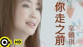 辛曉琪 Winnie Hsin【你走之前】Official Music Video