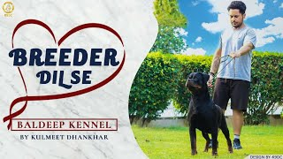 BREEDER DIL SE | BALDEEP KENNEL | KULMEET  DHANKHAR | PROFESSIONAL ROTTWEILER BREEDER || SCOOBERS
