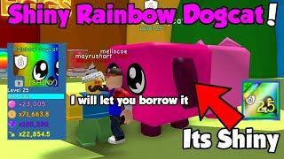 He Traded Me Shiny Rainbow Dogcat! OP STATS! Best Shiny Rainbow Pet - Bubble Gum Simulator