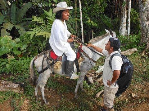 Colombia Travel Video: Bogota, San Gil, Ciudad Perdida, Cartagena, Medellin