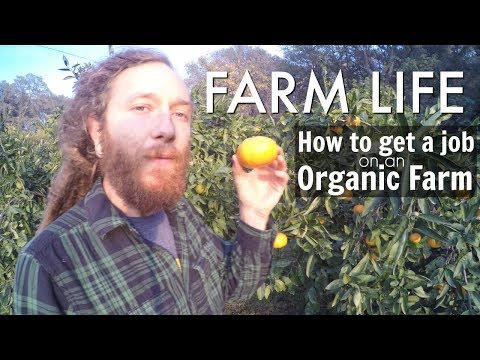 How to travel and work on an Organic Farm