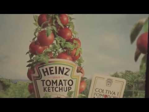 Kraft Heinz Italia - Intern & Trainee Programs